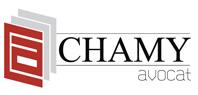 Maître André Chamy avocat à Mulhouse droit pénal et droit social